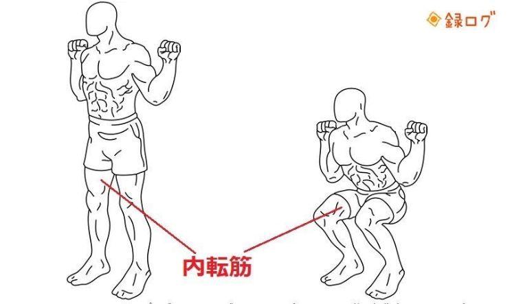 テストステロンを増やす 筋トレ